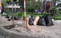 Công viên thành nơi... chứa rác