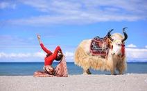 Ảnh cô gái Việt tập yoga ở Tây Tạng đẹp ngất ngây