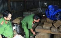 Cảnh sát từ TP.HCM lên Lâm Đồng cải trang phá nhóm lâm tặc