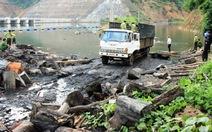 Phó Thủ tướng chỉ đạo xử nghiêm vụ gỗ lậu ở Lâm Đồng