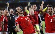 "HLV Darby: ""Euro 2016 nhiều bất ngờ thú vị"""