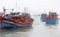 Đã nối liên lạc với tàu cá 5 ngư dân
