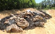 Chất thải của Formosa chôn lấp có chứa xyanua vượt ngưỡng