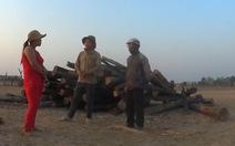 Lãnh đạo Đắk Lắk lên tiếng về phóng sự phá rừng của VTV