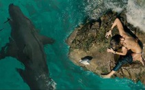 Từ Jaws đến The Shallows: nỗi ám ảnh về cá mập