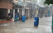 Cách sử dụng nước mưa sạch, an toàn