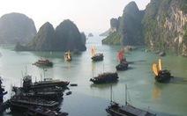Đình chỉ 4 tàu trênvịnh Hạ Long do doanh nghiệp nợ thuế