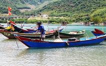 Ngư dân đầm Lăng Cô được hỗ trợ sau sự cố môi trường biển
