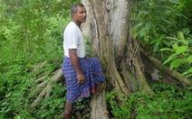 Người thổ dân 40 năm tự trồng rừng