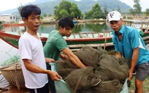 Thừa Thiên - Huế thêm ngư dân vùng cửa biển được bồi thường