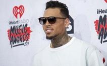 Chris Brown bị bắt vì dùng súng uy hiếp cựu hoa hậu
