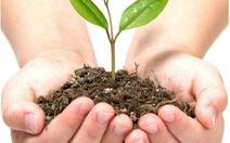 Chiến dịch trồng cây xanh tại TTC Safari - Thung lũng Tình yêu