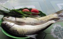 Ngọt bùi cá trôi đầm Lâm Bình