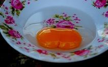 Trứng vịt 2 lòng đỏ ở hồ Lắk