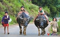 Nụ cười Việt Nam đẹp ngất ngây