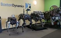 Những loại robot nào sẽ thống trị tương lai?