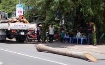 Cần cẩu gãy, cây dừađè chết oan thiếu niên 15 tuổi