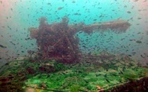 Phát hiện xác tàu Nhật đến VN bị đắm năm 1944