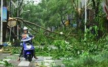 Chùm ảnh bão Sarika đổ bộ đảo Hải Nam