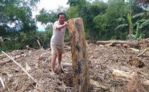 'Lũ gỗ' theo nước tràn ngập nhà dân