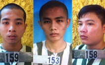 Bắt ba thanh niên trộm nhà phó chủ tịch huyện