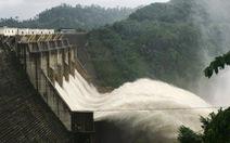 Nhiều thủy điện xả lũ, dân cuống cuồng lùa trâu bò tránh lũ