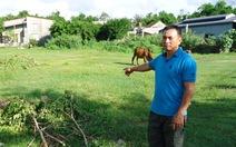Xã bán đất sai, 123 hộ dân bị ảnh hưởng