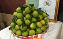 Lần đầu tiên một tỉnh miền Bắc tổ chức lễ hội trái cây