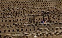 """""""Săn đầu người"""" giá bèo ở Ấn Độ"""