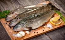Cá - thức ăn tốt cho sức khỏe và trí tuệ người cao tuổi