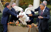 Ông Obama và Trump kêu gọi đoàn kết nhân Lễ Tạ Ơn
