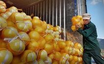 Phóng viên Tuổi Trẻ theo dấu nông sản Trung Quốc vào Việt Nam
