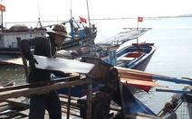 Hàng trăm tàu cá ra khơi sau khi trú bão