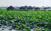 Hà Nội nghiên cứu nạo vét 1,2 triệu tấn bùn hồ Tây