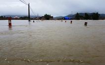 Lũ lớn bất ngờ, Bình Định di dời dân đến nơi an toàn