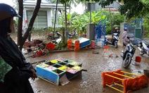 Lũ quét lại ập về Trường mầm non An Hiệp, Phú Yên