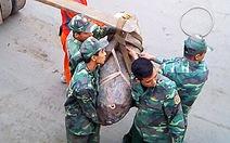 Xử lý thành công quả bom mắc vào mỏ neo tàu hàng