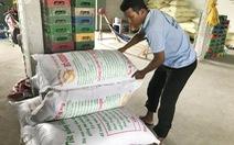 Nông dân kêu phí bản quyền lúa giống quá cao
