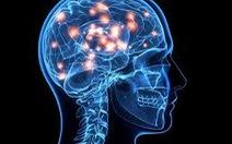 Tiểu đạm dễ bị giảm trí nhớ