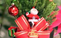 Giáng sinh nghe lòng thơm phức