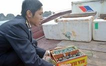 Phát hiện 6 tàu đánh cá bằng cách kích điện trên vịnh Hạ Long