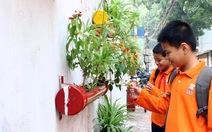 Hô biến, bãi rác thành vườn hoa
