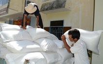 12 tỉnh xin hỗ trợ gạo cứu đói Tết Nguyên đán 2017