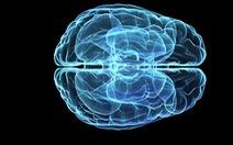 Não bộ con người bắt đầu lão hóa ngay từ tuổi 45