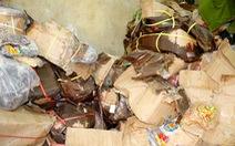 Thu giữ trên 10 tấn mứt bẩn chuẩn bị tuồn ra chợ Tết