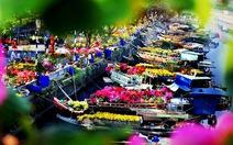 Rabến Bình Đông quận 8 chụp ảnh hoa xuân