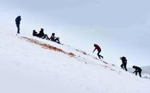 Hi hữu: rủ nhau trượt tuyết ở... sa mạc Sahara