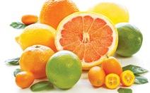 5 món ăn ấm bụng, tăng sức đề kháng ngày tết
