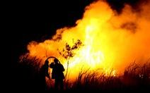 Indonesia sẽ mạnh tay với các công ty gây cháy rừng