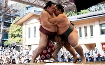 Nhật có sumo giành đẳng cấp Yokozuna sau 19 năm chờ đợi
